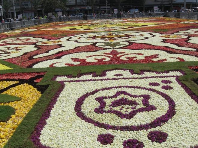 FlowerCarpetinTelAviv04