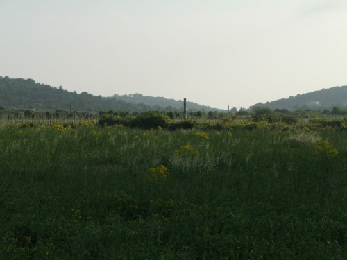 Podselje village, Plisko polje, location of airfield from WWII.