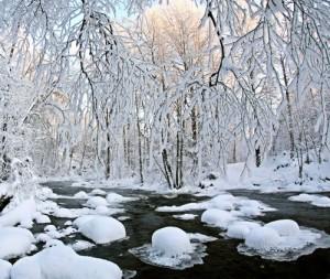 A glance into winter
