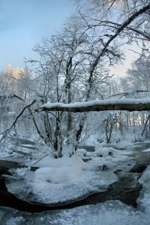 Memories of last winter