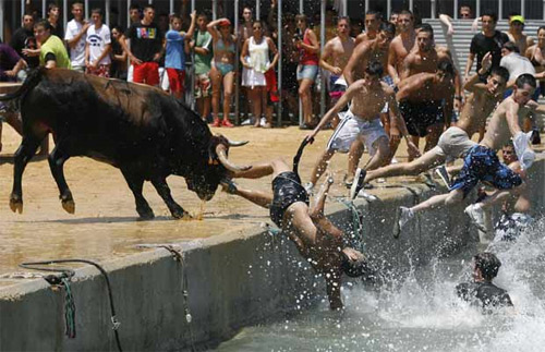 Bulls in Denia makes grown men jump in the water