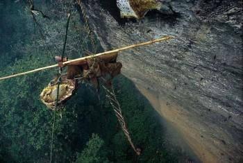 Nepal's honey hunters on Himalayan cliff