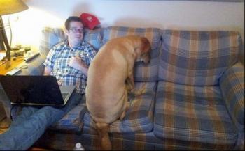 Hilarious photos of Puppies