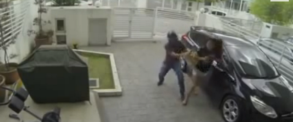 Malaysian Woman Fights Snatch Thief