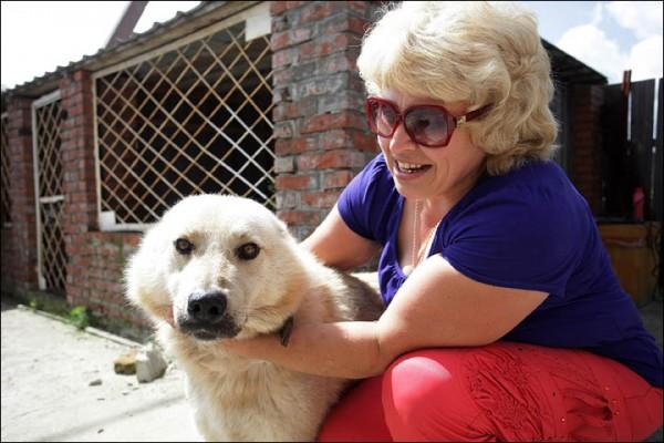 Druzhok - The incredibly loyal dog
