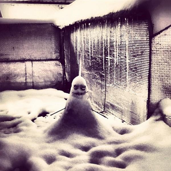 Bizarre snowmans