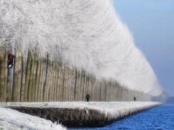 The World's Most Stunning Images From 2013