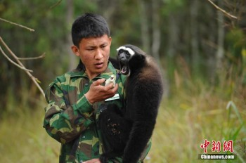 Funny photos of wild animals in China