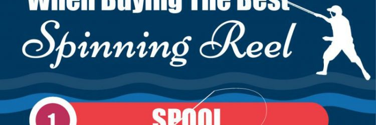 Factors To Consider When Buying The Best Spinning Reel [Infographic]