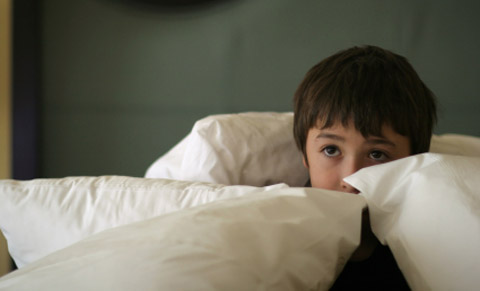 Four General Facts You Should Know About Phobias