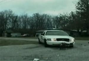 Dog eat police car