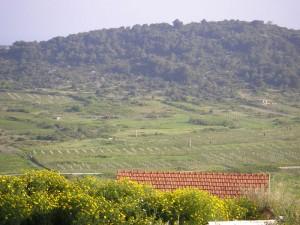 Podselje village, Plisko polje, location of airfield from WWII. Plisko polje was base of 352. (Y) R.A.F. Squadron. Location is marked with red-white columns.