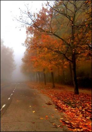 autumn feeling ..XX