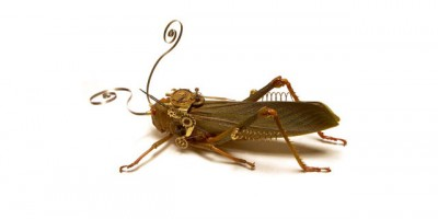 Steampunk Bugs - Half Insect, Half Metal