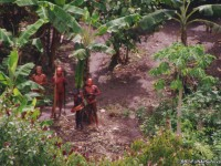 First ever aerial video footage of uncontacted Amazon tribe